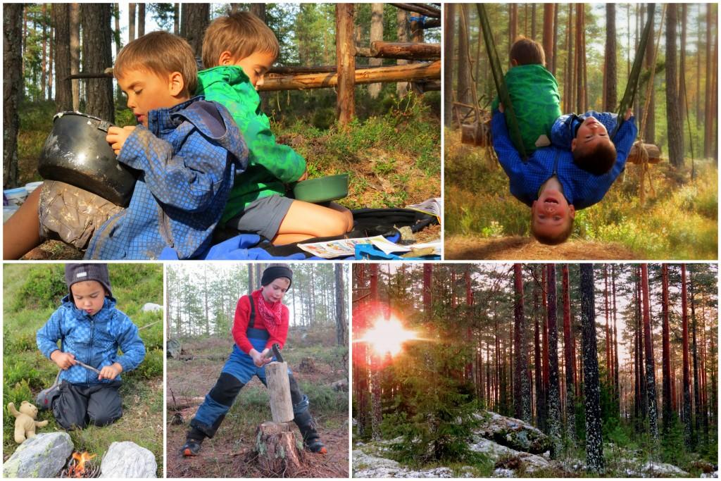 Livet i skogen