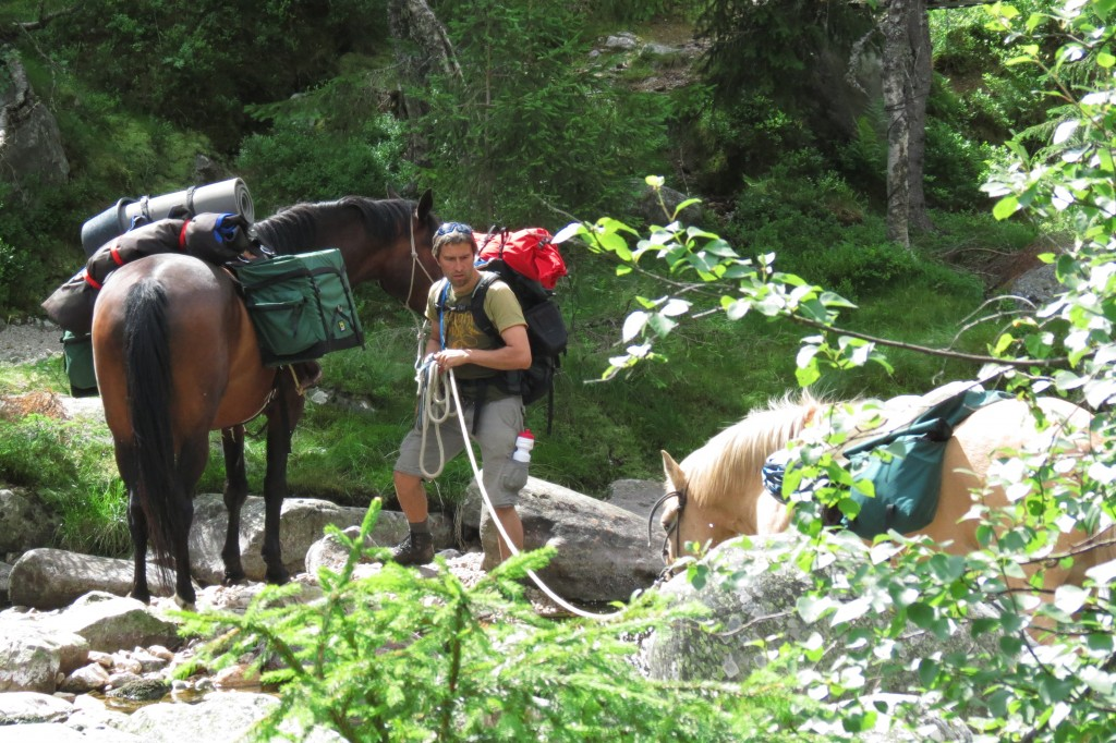 Elvekryssing med to hester