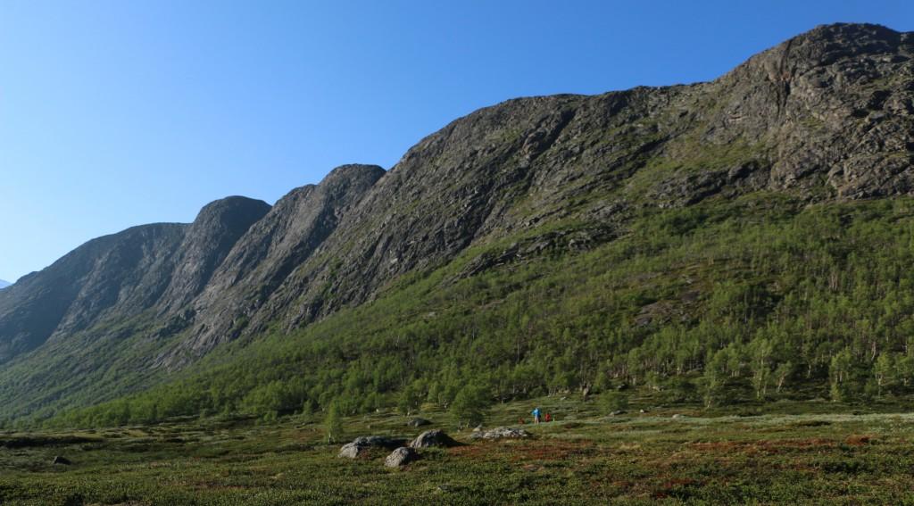 Knutshøe