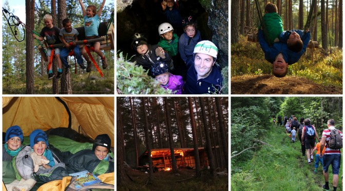 Topp 10 Her er skoglivs mest populære artikler